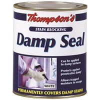 Thompsons  Damp Seal Paint - 750ml
