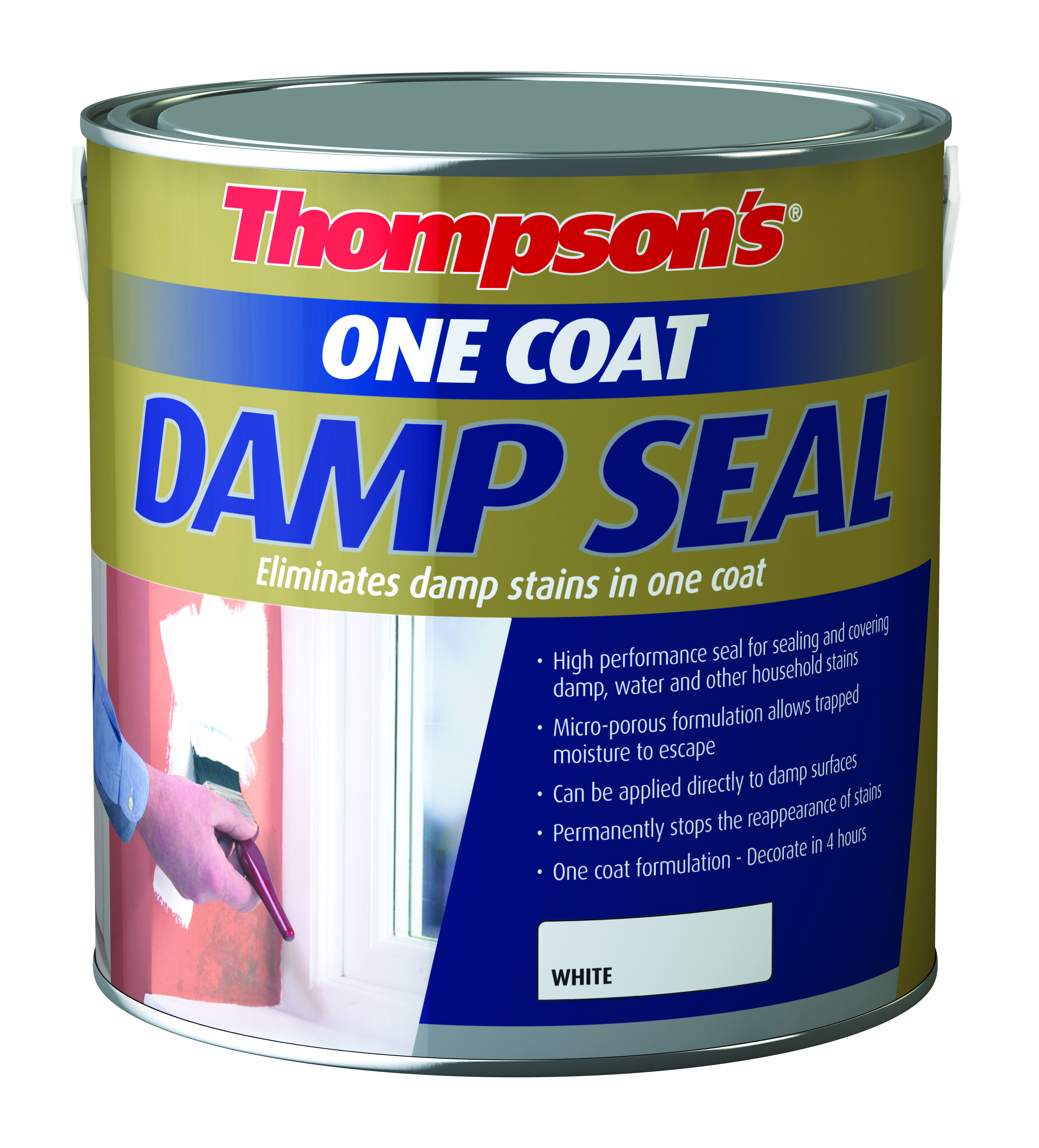 Ordinary Interior Damp Seal Paint Part - 11: Thompsons Damp Seal Paint - 2.5 Litre